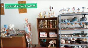 Laboratorium Anatomi